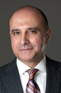 Babak  Roushanaee